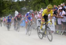 Alaphilippe, Tour de France 2019
